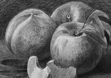 苏州美术素描水粉培训艺术培训