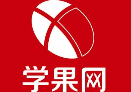 上海初中生语文同步辅导提升班 冲刺中考